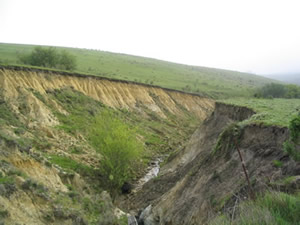 Gully formed by erosion